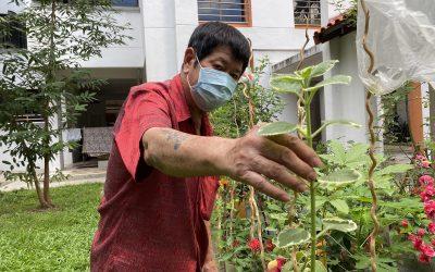 Green City Gardeners Take Root